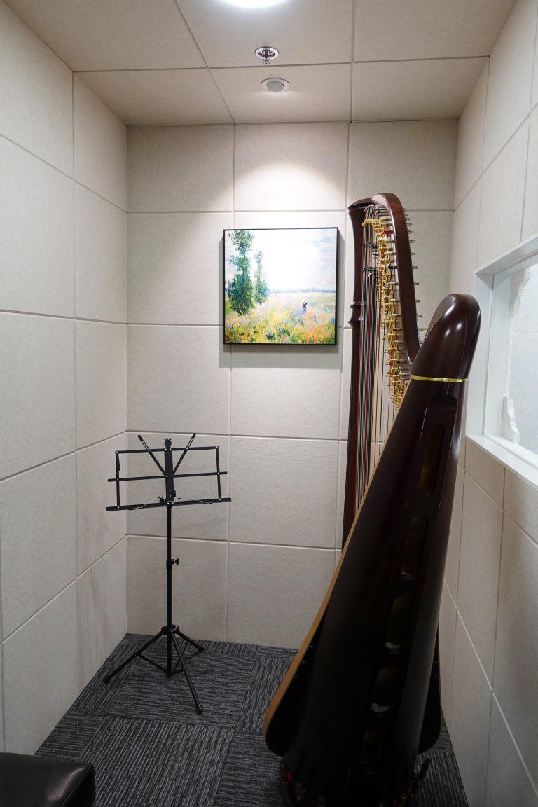 學豎琴必須要注意的事情! #二手豎琴 #豎琴老師 #豎琴課程 #沙田豎琴 #鑽石山豎琴 #leverharp 4